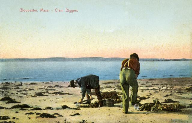 Gloucester-Clam-Diggers_pos