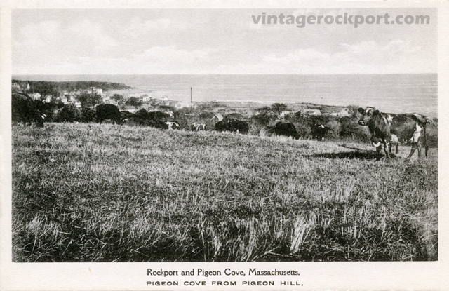 View-from-Pigeon-Hill-post